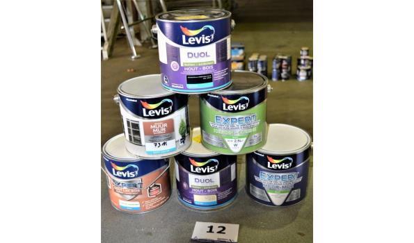 6 potten verf LEVIS