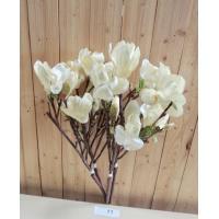 4 takken Kunst Magnolia