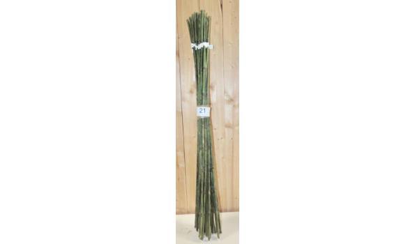 Kunst Bamboe sticks circa 25 stuks