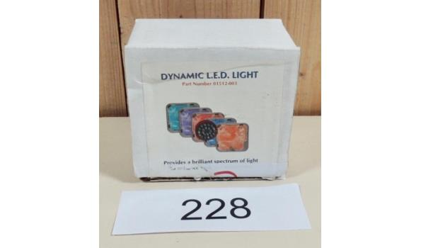 Dynamic 22 LED Lihgt fabr. Dimension one Spa's type 01512-003