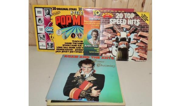 Diverse LP's- Maxi Singles circa 24 stuks