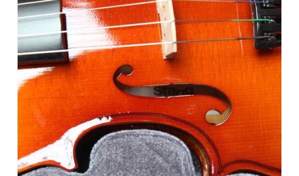viool STAG