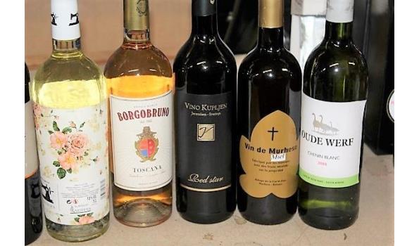10 flessen divers wijnen