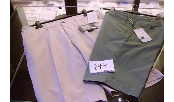 2 shorts CANALI 50,52