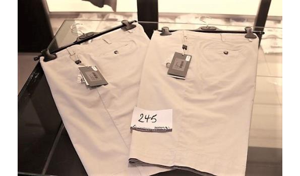 2 shorts CANALI 52, 54